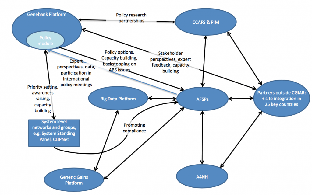 Primary linkages with the Policy Module within the CGIAR portfolio